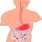 Ерозивний гастродуоденіт: ознаки і лікування