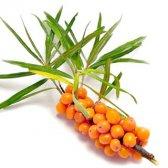 Які вітаміни і мінерали містяться в малині?