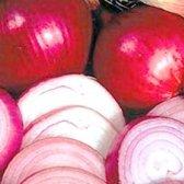 Корисні Властивості цибулі,! Застосування лука в народній медицині