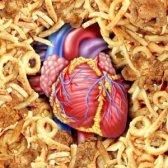 Збільшено кількість холестерину в крові