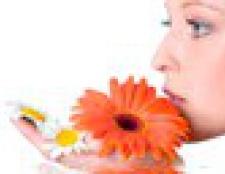 Домашні крему для повік, рецепти з натуральними маслами
