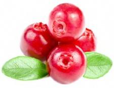 Які вітаміни містяться в кабачках?