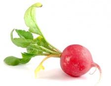 Які вітаміни в редисці?
