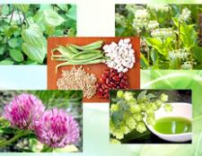 Які народні рецепти допомагають при клімаксі
