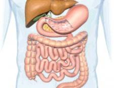 Синдром короткої тонкої кишки
